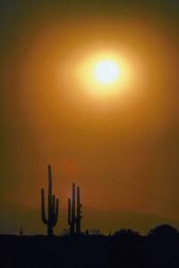 Windshield Replacement in Phoenix AZ